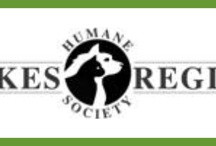 Pets for Adoption / Lakes Region Humane Society Open Tuesday-Saturday 11am-3:30pm 11 Old Route 28   •  Ossipee, NH 03864   •  Phone 603.539.1077