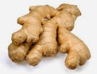 The Health Benefits of Ginger / Ginger can settle an upset stomach, ease digestion, and help lose pounds. Ginger has many other health benefits and tastes good.