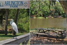 Arlington Park / Sarasota, FL.