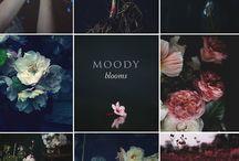 moody blooms