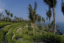 BALI | Wedding Villas / http://www.baliultimatevillas.net/wedding-venue/ | Villa Booking Inquiry = baliultimate@gmail.com