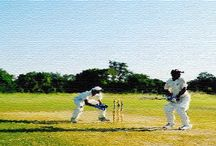 Crickart...The Art in Cricket / by Pramod Bhagat