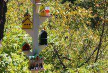 Fuglehus/Birdhouse