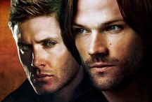 Brotherly Love / I think my favorite subject in shows (and books) is brothers ♥︎  Sam & Dean, Klaus & Elijah, Michael & Lincoln, Stefan & Damon, Ragnar & Rollo...