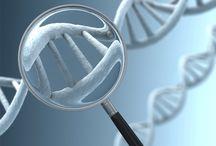 Genetic Testing / Information regarding genetic testing