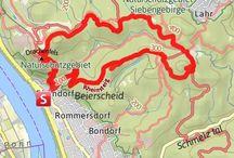 Bonn to do