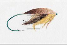 Fliege / Genießen sie die Schönheit der Fliegen, die zum Fliegenfischen genutzt werden.