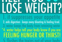 How does water help you loose weight