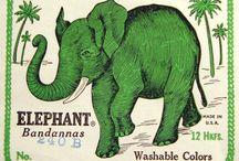 Elephants / by Barbara Ramos