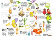 idioms.....  food and other
