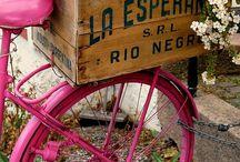 bike flower stand