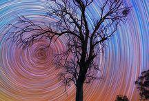 starry nights / by Julie Steele