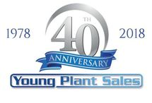 Young Plant Sales #constructionmachinery #onlinebusiness #plantsales