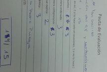 0.Evaluación del trabajo de Yan Garrido