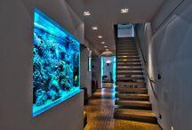 commercial aquarium