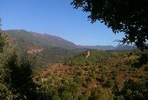 Castano Santo - Mountain Bike Tour