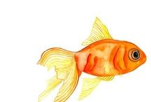 물고기일러스트