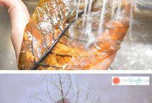 Skeleton leaves - kostrové listy