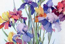 Watercolours / Flowers