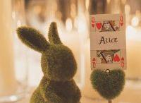 Alice in Wonderland Styling