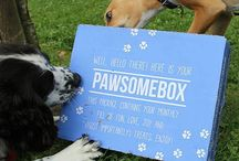 Our Pawsome Pals! #Pawsomepals / Some customer photos of their boxes and happy pups!