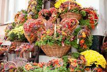 floristry funerary