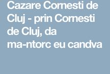 Cazare Cornesti de Cluj