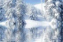 Zimní krásy