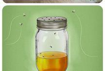 Boj s hmyzom