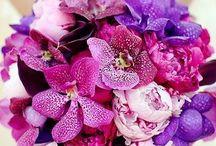 Kukkaiset