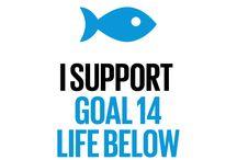 Global Goal 14: Life Below Water