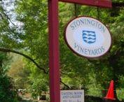 Connecticut Vineyards