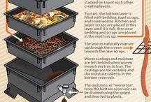 compost y lombriz