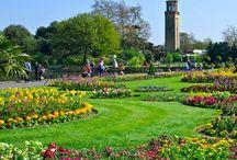 Gardens you must visit / Amazing public gardens you must visit