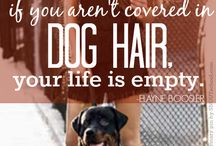Dog Lover Quotes / Sometimes you just have to write it down.