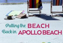 Apollo Beach, Florida / Discovering the latest and greatest in Apollo Beach, Florida