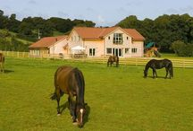 Fuzzy Orchard / Somerset 5 Star group accommodation sleeping 12 with indoor swimming pool, sauna and hot tub