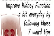 kidneys repairing