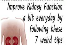kidney function