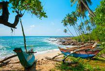 Sri Lanka / Wie droomt er niet van een zonovergoten vakantie op het prachtige Sri Lanka?! De stranden zijn fantastisch, de natuur smaragdgroen, de bewoners vriendelijk en de cultuur zeer rijk. Voor een strandvakantie bent u hier, óók in de wintermaanden, helemaal op uw plek.