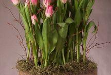 Flores / Fotos de flores y arreglos florales para decorar el hogar.
