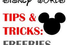 Disney Trip / Ideas to make Disney organized and fun