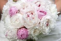Beautiful Brides Bouquets