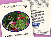 Wedding Seed Packets / These are some of the most popular seed packets for weddings.