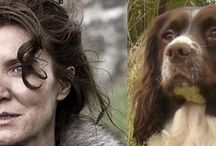 Dogs as Game of Thrones Characters / What dog would your favourite Game of Thrones Character be?