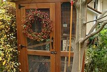 Chickens, Chicken Coops & Critters / by Donna Hill