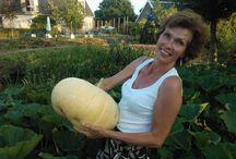 Rebecca de Boer / Oprichter en eigenaar van Buitenplaats De Blauwe Meije en Free Heart Organisatiebureau.