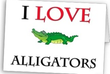 Alligators = Florida Fun
