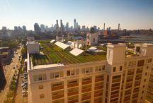 agricultura urbana - prédios