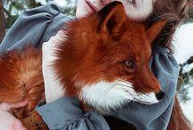 Wild friends / Animals, nature, wild friends, horses, sheep, wild sheep, fox, rabbit, eagle, turtle, bear, duck, goose,